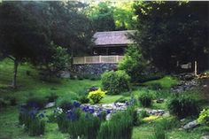 Cabin-100 Acres-Wildlife Galore! Convenient 2 Nashville & Opry  This cabin allows you all the privacy you crave (on over 100 acres).     1 Bdrm, 1 Ba, Sleeps 3  Pets allowed only with prior approval.   $$    http://www.petfriendlynashville.com/by-owner-rentals.html