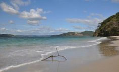 Rama-Pez El reflejo de la rama en el agua da la forma de un pez.... ¿no le parece? Guanacaste, Costa Rica