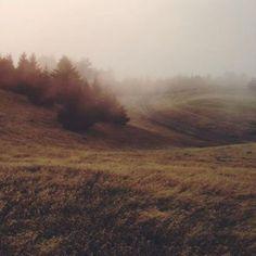 Qu'avez-vous prévu ce WE? Une promenade en pleine nature ça vous tenterait? #plaine #mont #nature #hike http://ift.tt/1Wavnr7