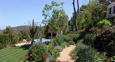 Un jardín mediterráneo y piscina en Ibiza