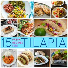 15 Tilapia Recipes you Gotta Try! - I eat so much tilapia.. this is perfect