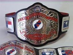 Nwa Wrestling, World Championship Wrestling, Japan Pro Wrestling, American Legend, Wwe Champions, Female Wrestlers, Professional Wrestling, Mixed Martial Arts, Belts
