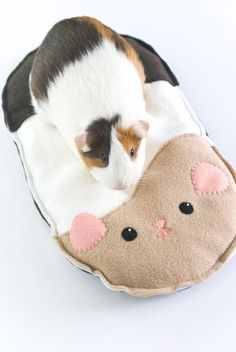 DIY Guinea Pig Cushion // wild olive