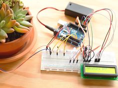 Potted Plant Protector. The simplest version of Potted Plant Protector senses the brightness of the light, wetness of the soil, and warmth of the air that your plant is exposed to. It outputs these readings over USB, displaying on your computer screen. You'll start by building this simple monitor, and then move on to intermediate and advanced builds that incorporate LED and LCD displays, learning about Arduino and electronics as we go.