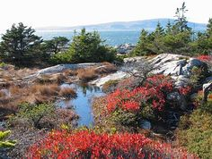 Schoodic Point in Maine, USA - Part of the beautiful Acadia National Park