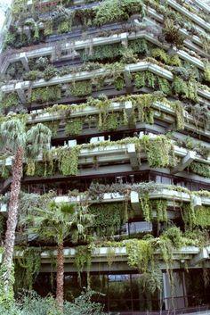 Vertical hanging gardens in Barcelona, Spain.