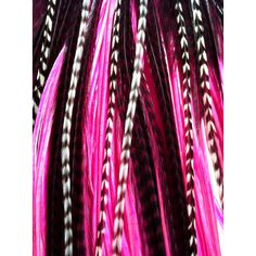 3 Real Hair Feather Extensions Long Grizzly Pink Wine Claret Feather... ($6) ❤ liked on Polyvore featuring beauty products, haircare, hair styling tools, bath & beauty, black, feather hair extensions, hair care, hair extensions and black hair care