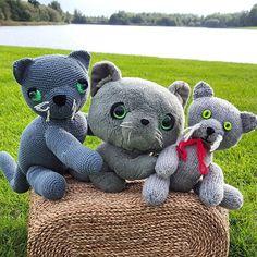 Teddy Bear, Cats, Animals, Instagram, Gatos, Animales, Kitty Cats, Animaux, Teddy Bears