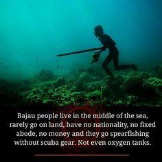 Bajau people.. Amazing