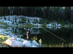 How to Select A Fly For Fly Fishing
