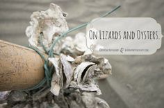 On Lizards and Oysters DearOne Photography Taiwan| Travel Blog