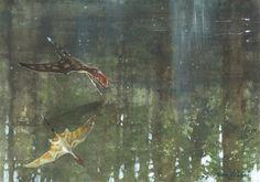 Dimorphodon macronyx by Tuomas Koivurinne on DeviantArt