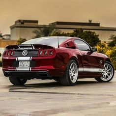 13 Shelby Mustang