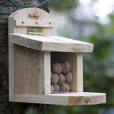 AuBergewohnlich Eichhörnchen Futterhaus