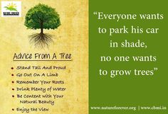 If this summer you have felt the heat. Make sure you plant a tree when monsoons arrive.  Share if you care