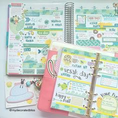My pages last week using my Erin Condren Life Planner and Websters Pages Colorcrush planner, coordinating decoration.