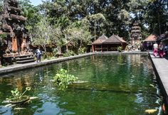 10 Kegiatan Eksotis yang Bisa Dilakukan di Ubud Bali