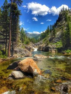 Lick Creek, near McCall Idaho Idaho Travel Destinations Places To Travel, Places To See, Travel Destinations, Mccall Idaho, Amazing Nature, Beautiful Landscapes, The Great Outdoors, Wonders Of The World, Nature Photography