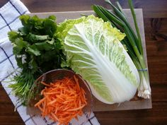 Castellon's Kitchen: Nappa Cabbage Salad with Ginger Garlic Dressing Raw Cabbage Recipe, Napa Cabbage Recipes, Napa Cabbage Slaw, Chinese Cabbage Salad, Slaw Recipes, Raw Food Recipes, Healthy Recipes, Slaw Dressing, Salad Sauce