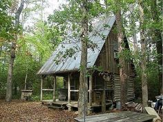 Log Cabin with a Tin roof in The Woods