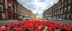 Image result for Limerick city Limerick City, King John, City Museum, Walking Tour, Tour Guide, Tourism, Castle, Street View, Image