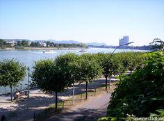 Bonn - Rhein