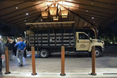 Disney's Animal Kingdom Lodge Night Safari - a recap from Barrie at The Official Blog of David's Vacation Club Rentals