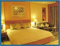 Hans Plaza Hotel Delhi