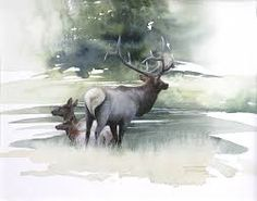 Bilderesultat for dimdi watercolor elk