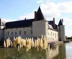 Resultados de la Búsqueda de imágenes de Google de http://www.castles.francethisway.com/images/chateau-plessis-bourre.jpg