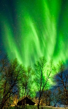 Vivid aurora by Kristin Repsher (Finland)                                                                                                                                                      More