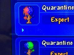Using seed 5162020 gets you a crimson/corruption world. Terraria Memes, Terraria Tips, Terraria House Design, Terraria House Ideas, Cool Pins, Funny Games, Terrarium, Minecraft, Fun Facts
