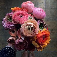 Random pretty from Design Sponge. My Flower, Fresh Flowers, Beautiful Flowers, Flower Bar, Beautiful Bouquets, Paper Flowers, Peonies, Floral Arrangements, Wedding Flowers