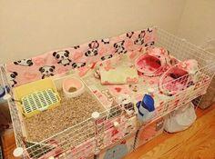 Diy Guinea Pig Cage, Guinea Pig House, Pet Guinea Pigs, Guinea Pig Care, Pet Rats, Pets, C&c Cage, Guinea Pig Accessories, Bunny Room