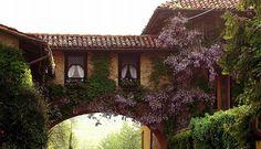 Pollone - Verso l'ingresso alla Burcina (Biella, Italy)