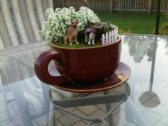 I did it!  My Latest obsession...tiny gardening and my pets!  So cute - and so easy!