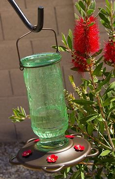 """Love this """"Love Hummingbirds?  We do too :) You'll love this Best Nectar Feeder for Hummingbirds.                      It Attracts Hummers Like Crazy and its the perfect gift idea for moms, grandmas, women, hummingbird lovers or even yourself :)    #hummingbird #hummingbirds #hummingbirdfeeder #hummingbirdgifts #WeLoveHummingbirds Hummingbird Nectar, Glass Hummingbird Feeders, Ruby Throated Hummingbird, Humming Bird Feeders, Cherry Valley, How To Attract Hummingbirds, Afternoon Snacks, Lawn And Garden, Red Glass"""