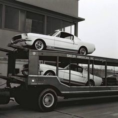 Delivering Shelby Mustangs