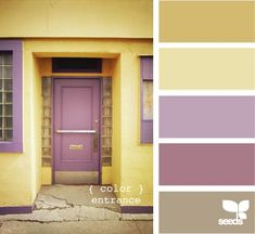 How to find your perfect color palette - love this!