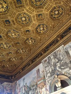 di Palazzo Vecchio - Heavy detailed Gold interiored ceilings, with Renaissance art on surrounding walls. Intricate patterns and design. The historical seat of government of the city of Florence