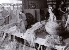 Advocates of Industrial Hemp Point to Kentucky's Past As Top Producer | Weedist