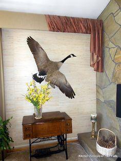 Canada Goose' fake or fortune