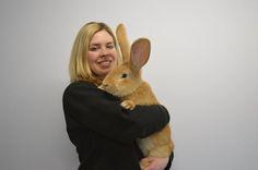 Atlas n'est encore qu'un bébé mais pourrait bien détrôner le record du plus grand lapin au monde, actuellement détenu par Darius. Cet adorable animal âgé de 7 mois a été abandonné par son maître en raison de sa taille impressionnante....
