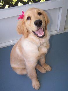 Awww, so cute!