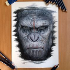 Caesar Color Pencil Drawing Love the new poster from the movie Dawn of the planet of the apes, it was perfect for my style. from all stuff i draw things like this go best with my method of drawing....