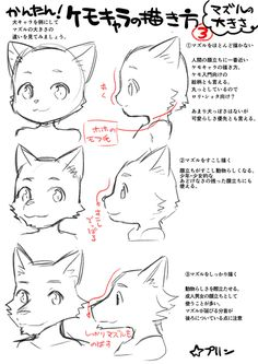 Drawing tutorial face wolf ideas - New Ideas - Arte Furry, Furry Art, Furry Wolf, Animal Drawings, My Drawings, Drawing Base, Drawing Drawing, Wolf Face Drawing, Drawing Ideas