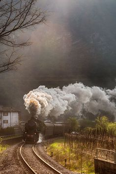Steam Locomotive near Feltre by Luigi Cavasin