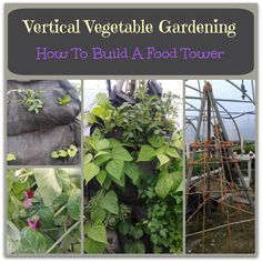 Vertical gardening ideas for growing lots of delicious vegetables in a small space. How to build a food tower and tips for vertical vegetable gardening.
