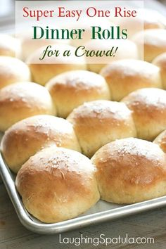 Amazingly easy Fresh Dinner Rolls made in a snap!  Your family is soooo gonna love you for this!