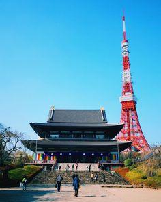 The beautiful Zōjōji in the winter sunlight. One of my favorite temples in Tokyo. (by 2min_japan)
